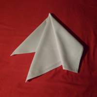 a very easy napkin fold the French fold