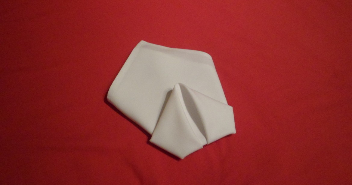 Very quick and easy to achieve a great place to begin if you have just started to learn how to fold napkins