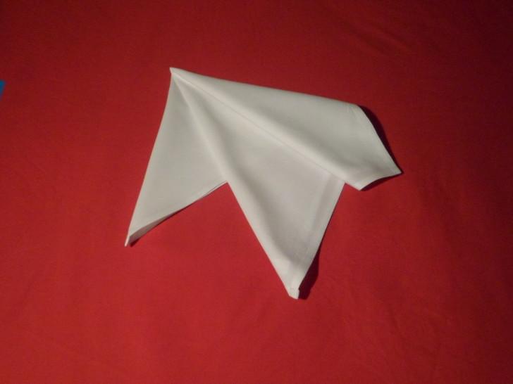 French Fold Folding Napkins
