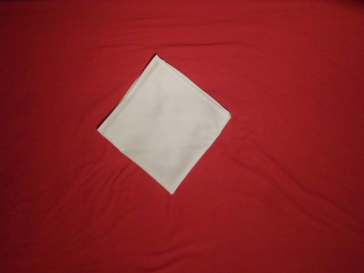Fancy Napkin Folding Techniques   Rosebud Fold Step five flip the napkin over