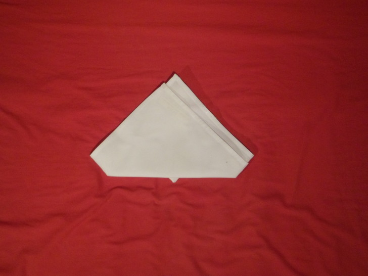 How To Fold Napkins The Crown Fold Step Seven flip the napkin over