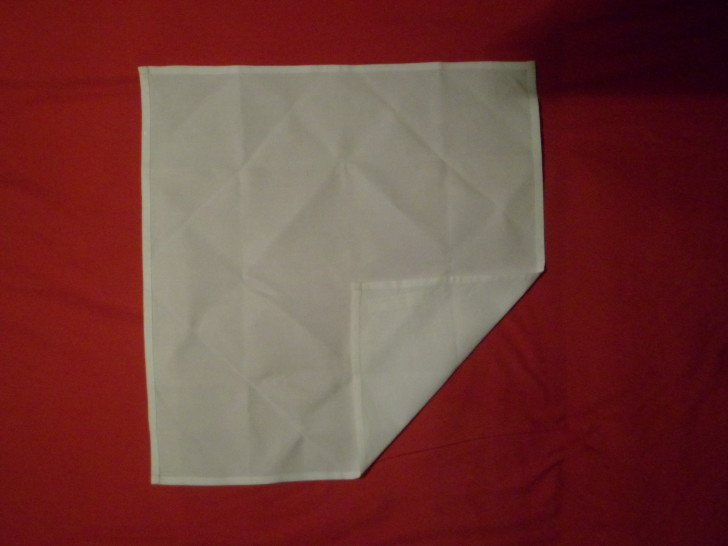 Napkin Folding Rose Fold Step two fold the bottom right corner up in to the centre